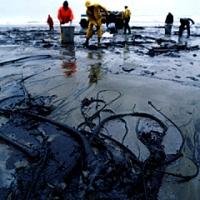 Weit über 3 Mio Liter Rohöl auf einem Acker in North Dakota (Oktober 2013; Bildquelle: Desmogblog)