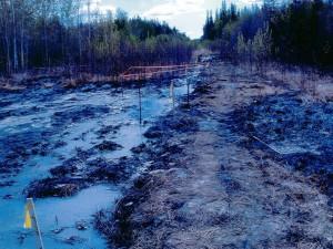 Im Frühsommer 2013 brach eine Pipeline mit Abwasser aus der Teersandproduktion nahe Zama City, Kanada, und kontaminierte die Umwelt großflächig.